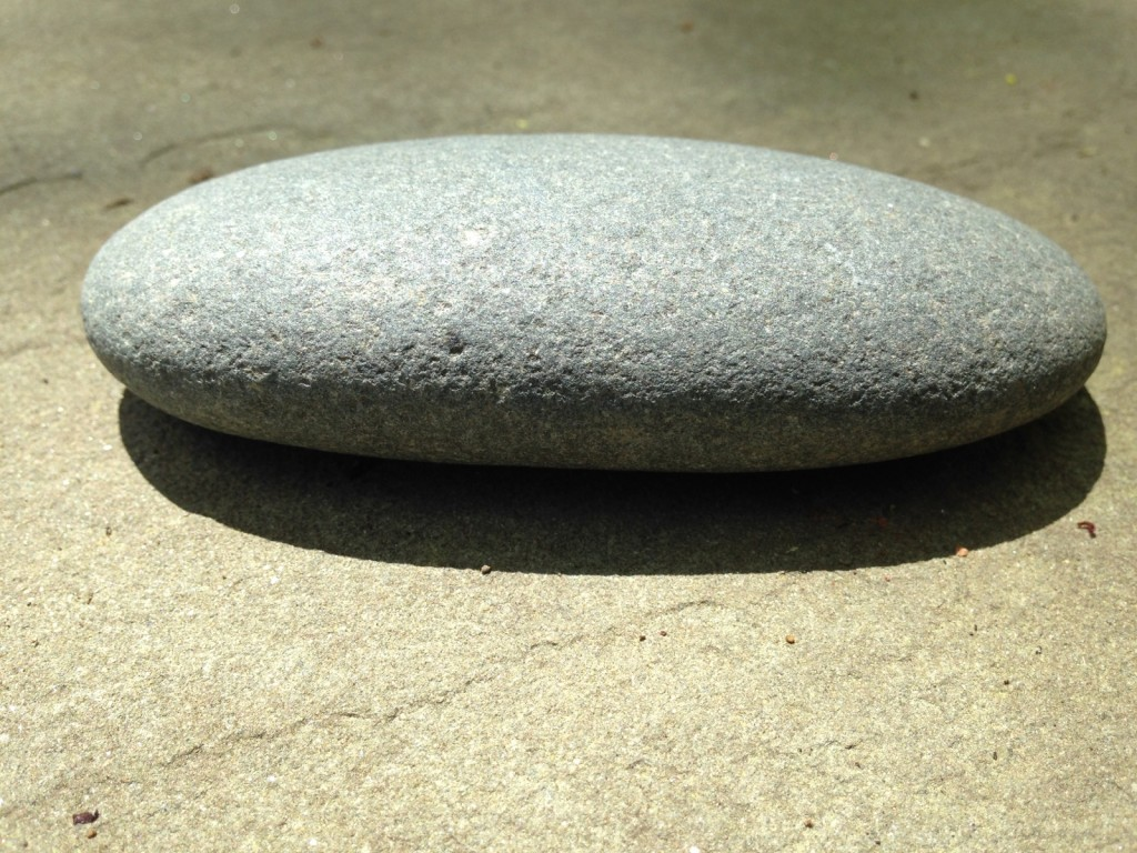 gray oval rock close-up