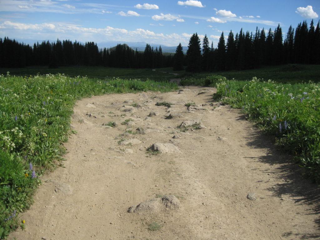a bumpy dirt road